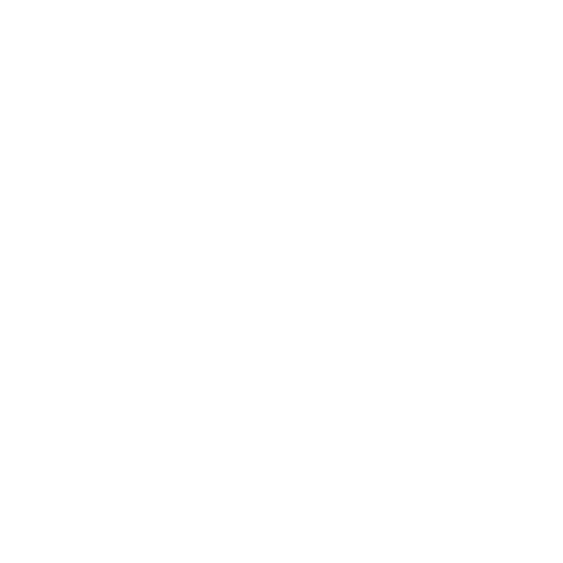 AS SEEN IN THE TELEGRAPH